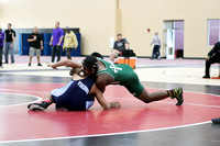 Boylan Varisty Wrestling Conference 1-31-2015-0936