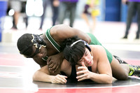 Boylan Varisty Wrestling Conference 1-31-2015-0977