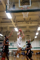 Boylan Boys Varsity Basketball vs Harlem 2-15-2014-6004
