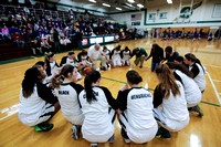 Boylan Girls Varsity Basketball vs Hononegah 2-13-2015-4136