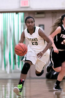 Boylan Girls Varsity Basketball vs Freeport 2-5-2016-0019