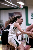 Boylan Girls Varsity Basketball vs Freeport 2-5-2016-0023
