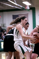Boylan Girls Varsity Basketball vs Freeport 2-5-2016-0022