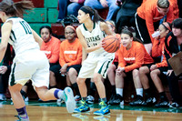 Boylan Girls Varisty Basketball vs Freeport 1-23-2015-0928