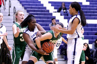 Boylan Girls JV Basketball vs Guilford 12-6-2016-0020