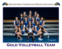 RC New 8x10 Team Template Fall 2017 Middle School Gold Volleyball