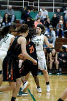 Boylan Girls Varsity Basketball vs Harlem 1-6-2018-0025