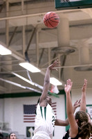 Boylan Girls Varsity Basketball vs Freeport 2-5-2016-0006