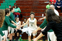 Boylan Girls Varsity Basketball vs Auburn Regional 2-14-2017-0009