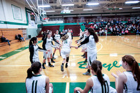 Boylan Girls Varisty Basketball vs Freeport 1-23-2015-0916
